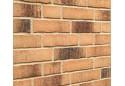 Клінкерна плитка Feldhaus R 734 NF14/DF14