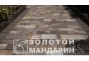 Тротуарна плитка Золотой Мандарин Паттерн 6 см, росано